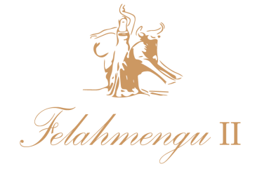 TABLAO FELAHMENGU